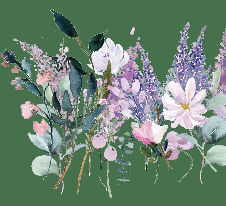 FlowerscontactSD